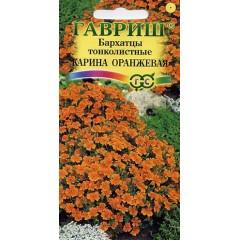 Бархатцы тонколистные Карина оранжевая /0,05 г/ *Гавриш*