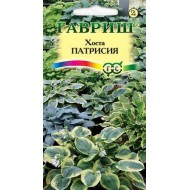 Хоста Патрисия смесь /5 семян/ *Гавриш*