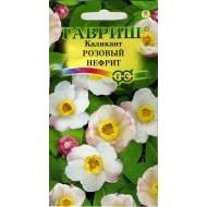 Каликант китайский Розовый нефрит /3 семечка/ *Гавриш*