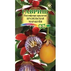 Пассифлора крылатая Бразильская маракуйя /5 семян/ *Гавриш*