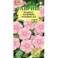 Катарантус Пацифика розовый лед /7 семян/ *Гавриш*