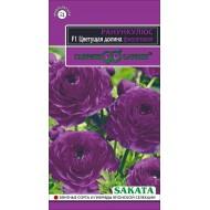 Ранункулюс Цветущая долина F1 фиолетовая /3 семечка/ *Гавриш*