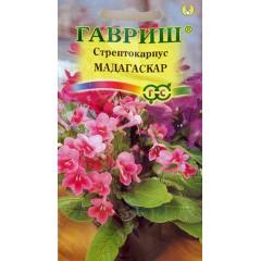 Стрептокарпус гибридный Мадагаскар смесь /5 семян (драже)/ *Гавриш*