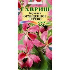 Баухиния Орхидейное дерево /3 семечка/ *Гавриш*