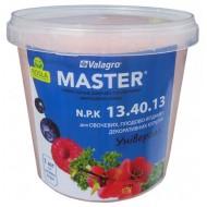 Удобрение МАСТЕР комплексное NPK 13.40.13 /1 кг/ *Valagro*
