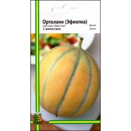 Дыня Ортолани (Эфиопка) /1 г/ *Империя Семян*