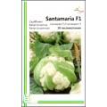 Капуста цветная Сантамария F1 /20 семян/ *Империя Семян*