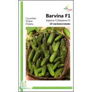 Огурец Барвина F1 /10 семян/ *Империя Семян*