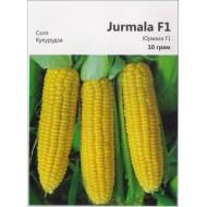 Кукуруза сахарная Юрмала F1 /10 г/ *Империя Семян*