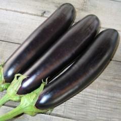 Баклажан Самурай F1 /1.000 семян/ *Kitano Seeds*