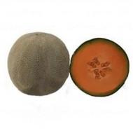 Дыня KS 7084 F1 /1.000 семян/ *Kitano Seeds*