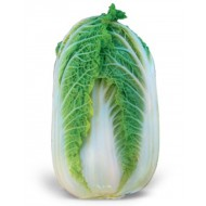 Капуста пекинская Зена F1 /1.000 семян/ *Kitano Seeds*