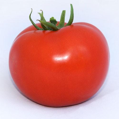 ca202a081b62d7 Купить семена томата Хитомакс F1 1000 семян Kitano Seeds™ в магазине ...