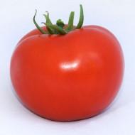 Томат Хитомакс F1 /500 семян/ *Kitano Seeds*