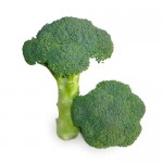 Капуста брокколи KS 355 F1 /1.000 семян/ *Kitano Seeds*