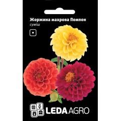 Георгина Помпон смесь /0,2 г/ *LedaAgro*