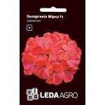 Пеларгония Мирка F1 /5 семян/ *LedaAgro*