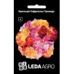 Эшшольция Гофрированная роза /0,1 г/ *LedaAgro*
