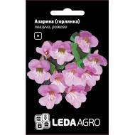 Азарина ползучая розовая /4 шт/ *LedaAgro*