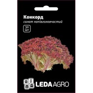 Салат Конкорд /30 семян/ *LedaAgro*