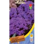 Агератум мексиканский фиолетовый /0,1 г/ *Moravoseed*