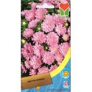 Астра карликовая розовая /0,4 г/ *Moravoseed*