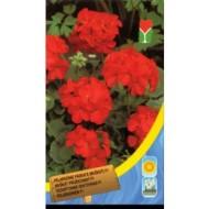 Пеларгония красная /8 семян/ *Moravoseed*