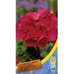 Пеларгония розовая /8 семян/ *Moravoseed*