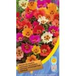 Портулак крупноцветковый смесь /0,15 г/ *Moravoseed*