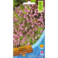 Гипсофила элегантная розовая /0,15 г/ *Moravoseed*