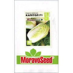 Капуста пекинская Капитол F1 /20 семян/ *Moravoseed*