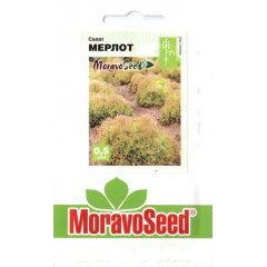 Салат Мерлот /0,5 г/ *Moravoseed*