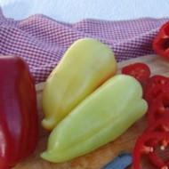 Перец сладкий Цинтия F1 /500 семян/ *Moravoseed*