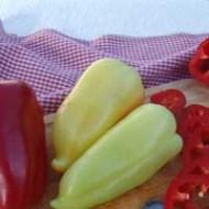 Перец сладкий Цинтия F1 /5.000 семян/ *Moravoseed*