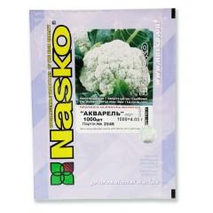 Капуста цветная Акварель /1.000 семян/ *Наско*
