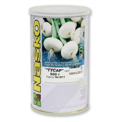 Лук Гусар /0,5 кг семян/ *Наско*