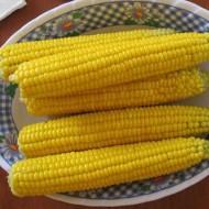 Кукуруза сахарная Лендмарк F1 /10 кг семян/ *Clause*