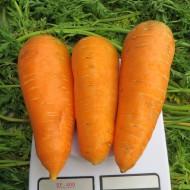 Морковь Болтекс /0,5 кг семян/ *Clause*