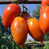 Томат Большая Мама /20 семян/ *Частная коллекция*