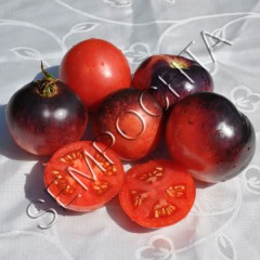 Томат Аметистовая Драгоценность (Amethyst Jewel) /20 семян/ *Частная коллекция*
