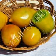 Томат Зеленый Чили (Chile Verde) /20 семян/ *Частная коллекция*