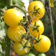 Томат Лимонный Черри (Lemon Cherry) /20 семян/ *Частная коллекция*