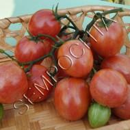 Томат Розовый Шмель (Pink Bumble Bee) /20 семян/ *Частная коллекция*