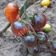 Томат Голубой Ручей (Blue Bayou) /20 семян/ *Частная коллекция*
