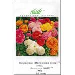 Ранункулюс Меджик F1 смесь /50 семян/ *Syngenta Seeds*