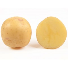 Картофель Электра (элита) /25 кг/