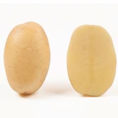 Картофель Нектар (элита) /25 кг/