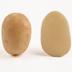 Картофель Саванна (элита) /25 кг/