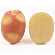 Картофель Бикини /5 кг/