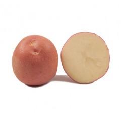 Картофель Инфинити (элита) /5 кг/